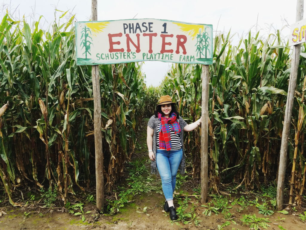 10 Reasons to Visit Schuster's Farm this Fall
