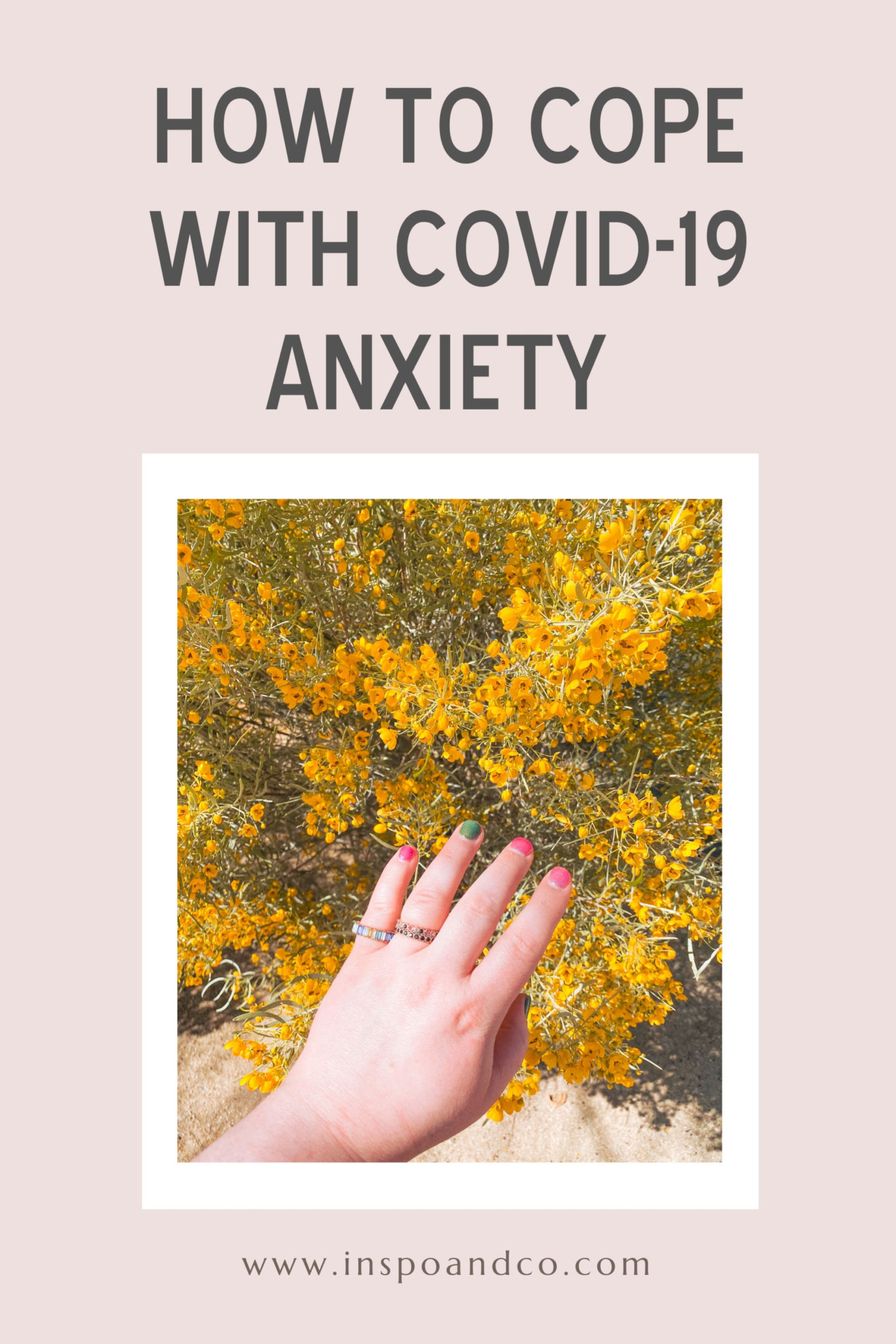 how to cope with covid-19 anxiety